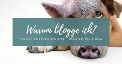Beitragsbild Warum blogge ich